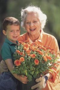 Grandparent Custody in Arizona